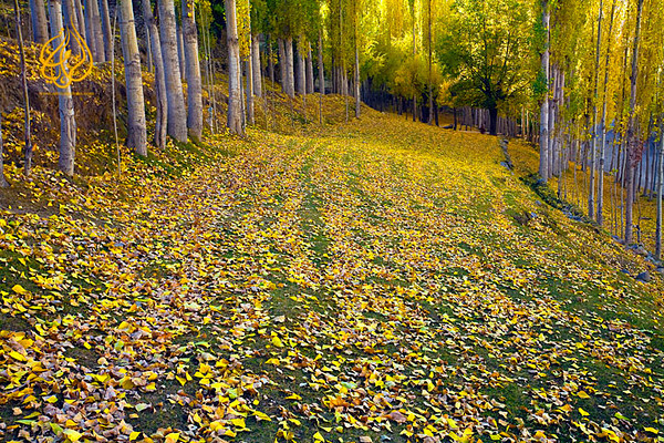 "Fall of Nagar, Hunza valley ""Pakistan"""