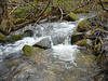 Spring Stream,