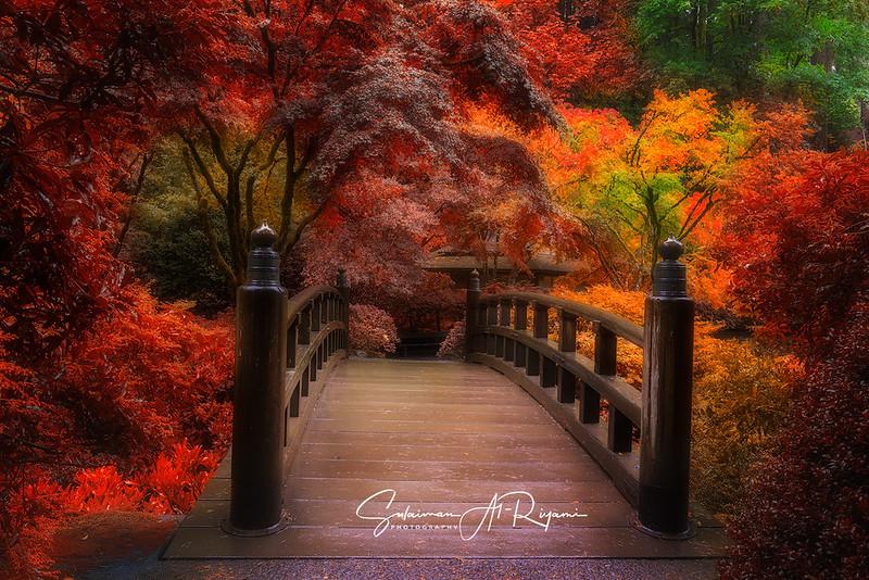 Autumn paradise