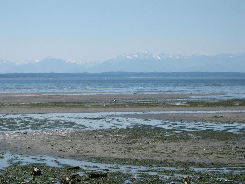 Low tide at Carkeek Park