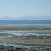 Low tide at Carkeek Park
