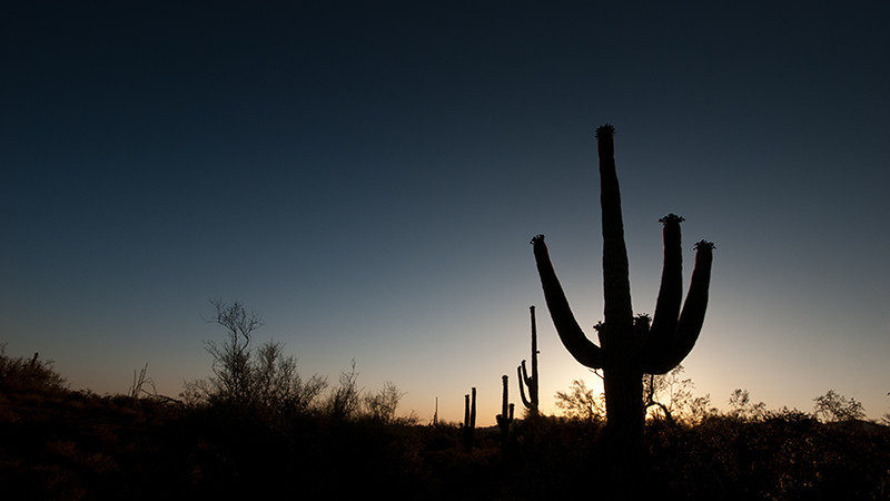 Arizona Desert Sunset