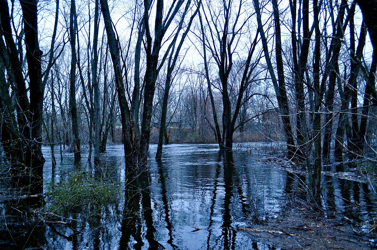 Charles River flood in April, blue tone