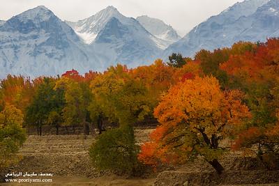 Autumn in North Pakistan.