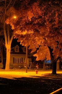 Maple Corner