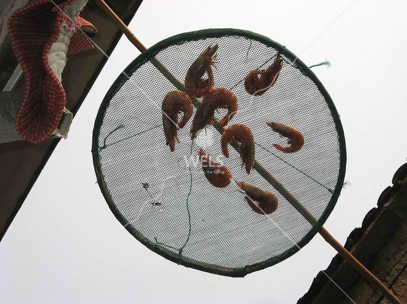 Drying prawns SE coast of China by kstellick