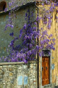 Spring in Castellina in Chianti