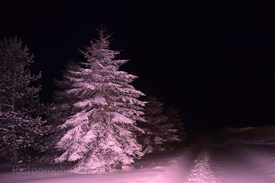 Winter, Walking, Rictographs Images