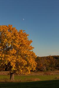 Moon Over Wisconsin