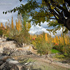 "Ali Abad, Hunza valley ""North Pakistan"", Autumn 2009."