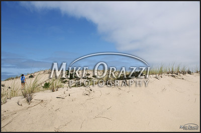 Dunes in the Cape Cod National Seashore in Provincetown