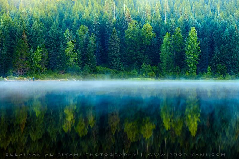 Foggy morning, Trillium Lake, Oregon, USA