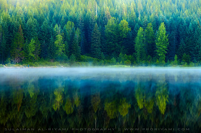 Foggy morning, Trillium Lake, Oregon, USA