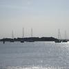 Amelia Island 054