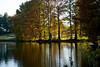 129 Shaw Nature Reserve (lake scene)