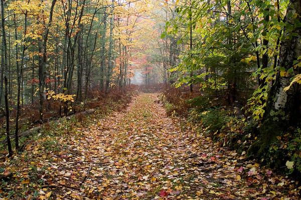 Alger County Michigan