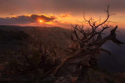 Al Jabal Al Akhdhar sunset