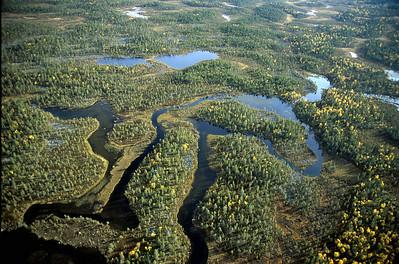 Vannsystemer i Øvre Pasvik (© Ragnar Våga Pedersen)