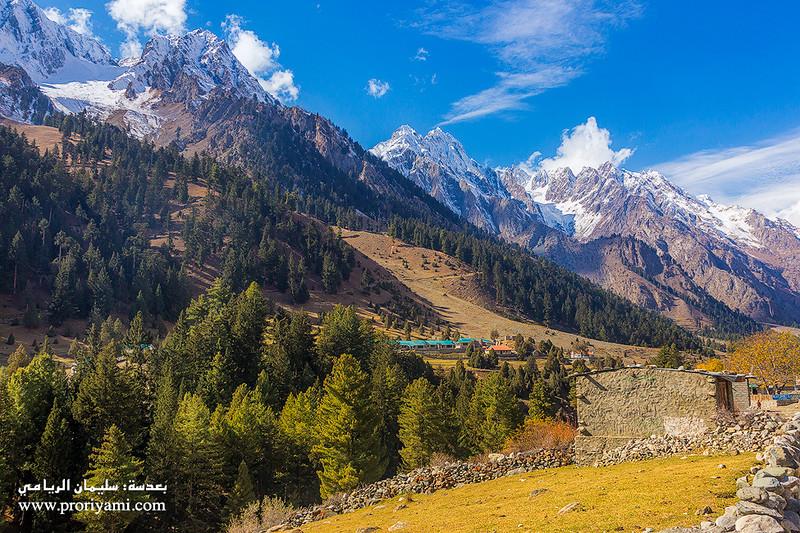 """Naltar Valley """" Pakistan """"."""