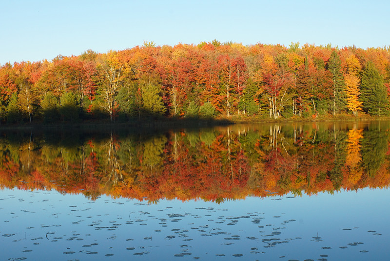 Halfmoon Lake<br /> Alger County<br /> Michigan