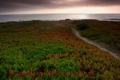 Pescadero Beach, CA1, California