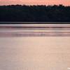 Sunrsies over water
