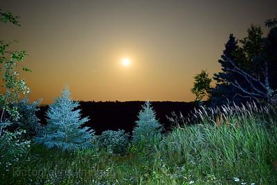 Trees, Mars, Moon,