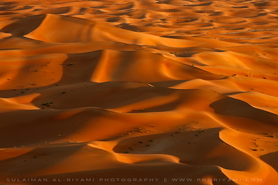 Empty Quarter , Oman