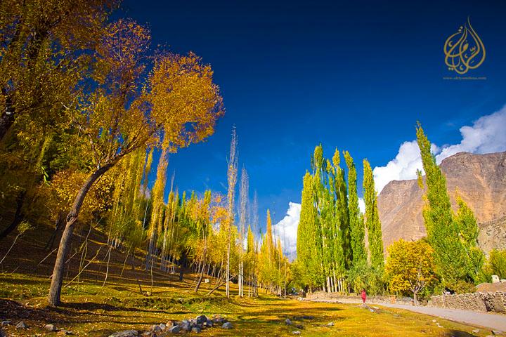 "Autumn colours in Nagar, lower Hunza ""Pakistan"""