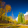 "Autumn colours in Nagar, lower Hunza ""Pakistan"""