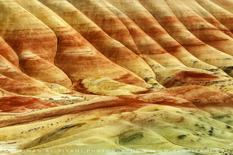 """The Painted Hills, Oregon """" USA """""""