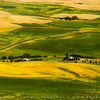 Palouse fields from Kamiak Butte, East Washington state, USA