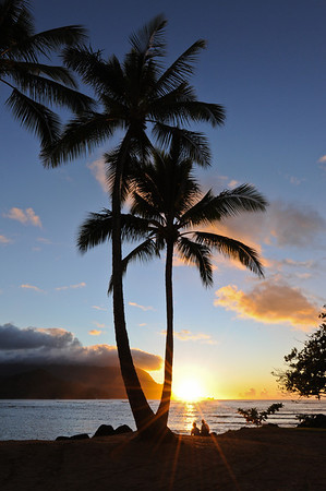 Sunset next to the palm trees on the beach at Hanalei Bay Kauai, Hawaii
