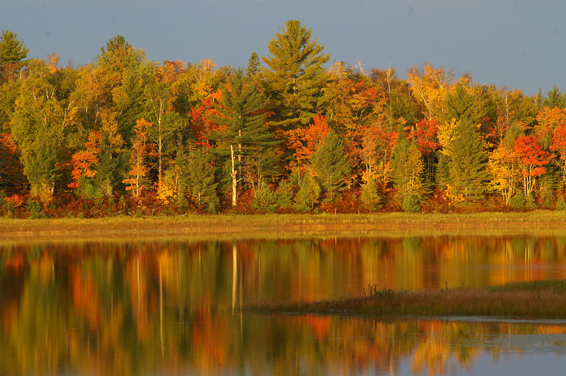 Merwin Lake<br /> Kingston Plains Area<br /> Alger County, Michigan