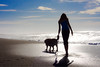 Girl and Dog Walking on Beach