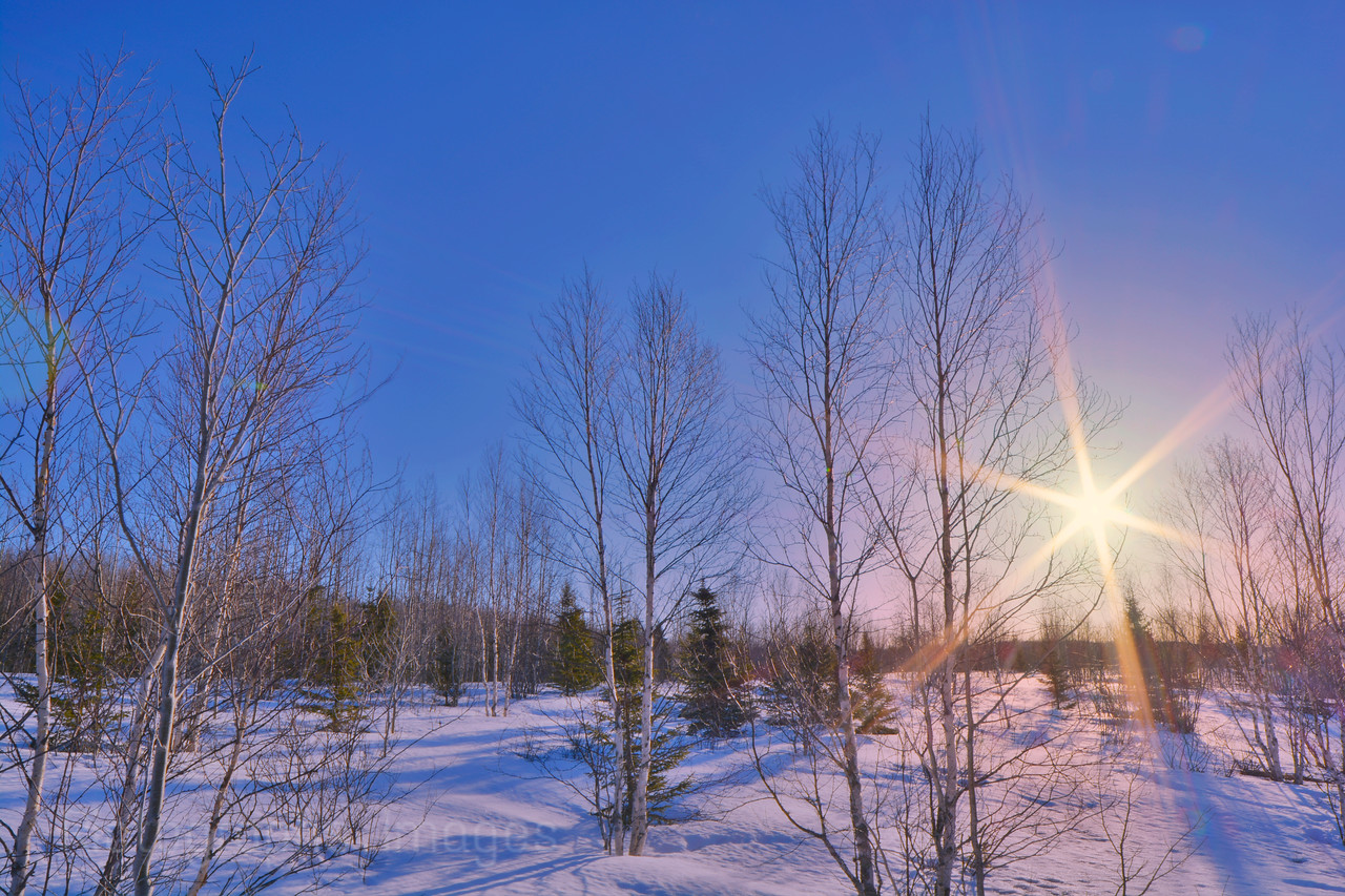 Winter Sunrise 2015
