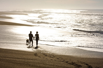Couple with Dog Walking on Beach