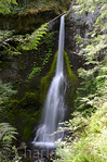 Marymere Falls, Olympic National Park, WA (15 Jun 2012)