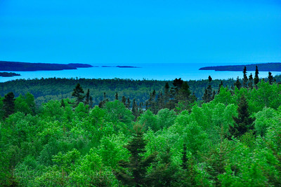 The Boreal Forest Of Trees & Lake Superior,