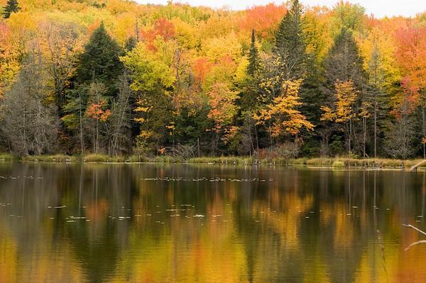 Six Mile Pond<br /> Hiawatha National Forest