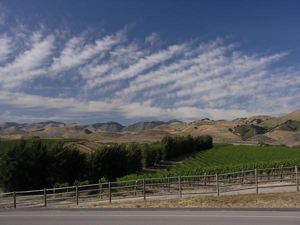 Wine country.JPG