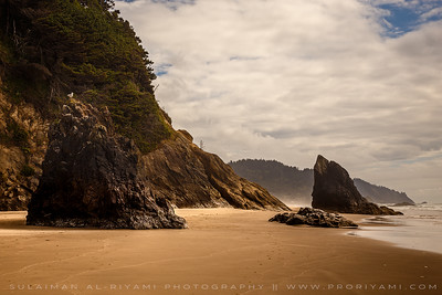 Oregon Coast, Oregon, USA