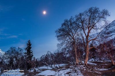 "Night shot at Naltar valley ""Pakistan""."