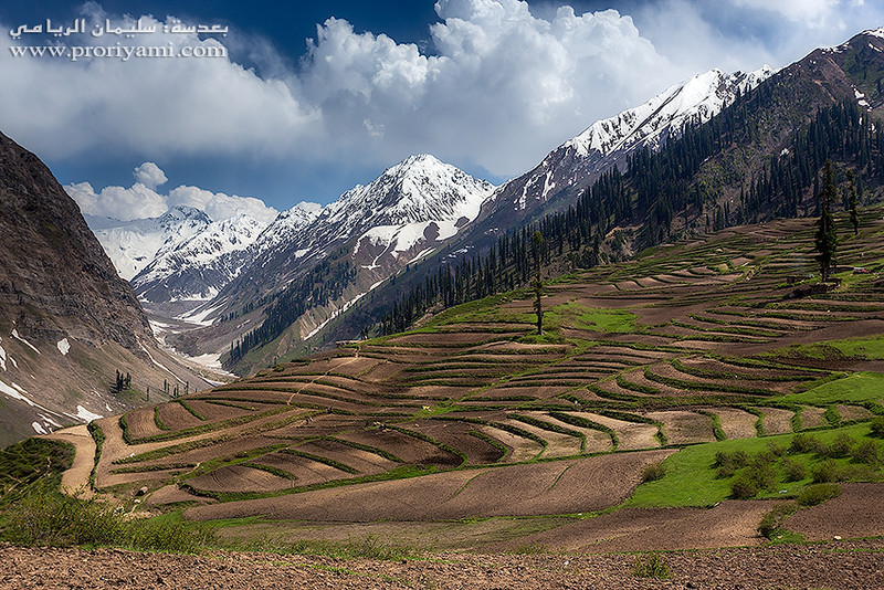 Lalazar, Kaghan Valley, Pakistan