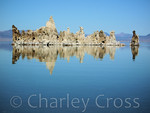 Reflection. Mono Lake, CA (21 Oct 2005)