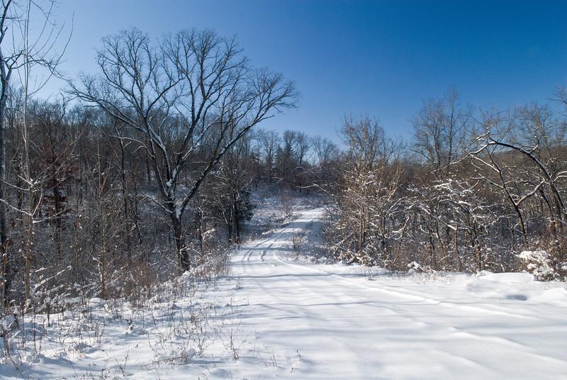 137 Dec 17 2007 Snow - Allenton Bluff Road