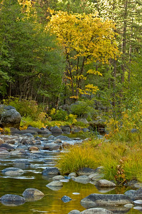 South Fork, Merced River