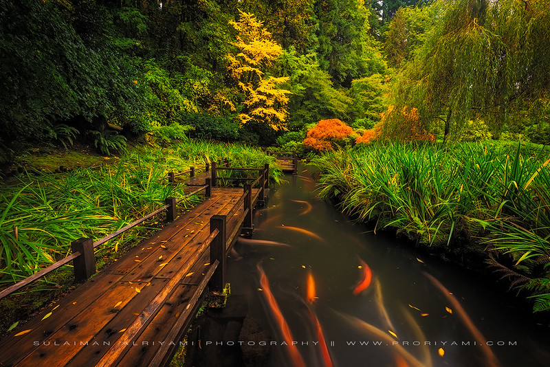 Portland Japanese Garden, USA