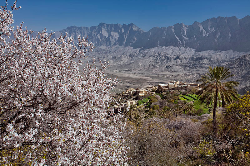 "Spring in Wakan village, Wadi Mastal ""Oman"""