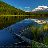 Trillium lake, Oregon, USA